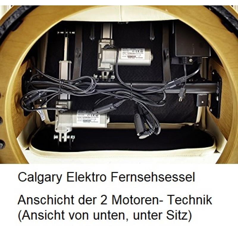Calgary Elektro XL 019